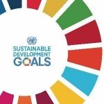 Group logo of UN SDG